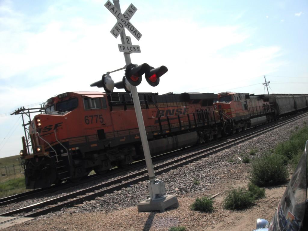 DSCF1571